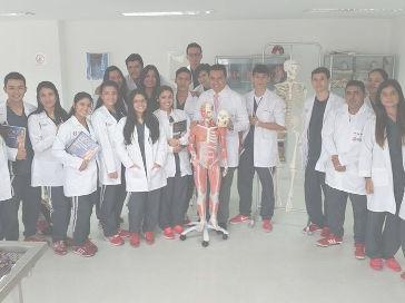 Grupo Enfermedades infecciosas