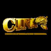 Logo CINA_Min