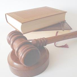 Especialización en Derecho Constitucional y Sistema Interamericano de Derechos Humanos
